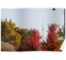 Fall Colors,CN Tower Framed  Poster