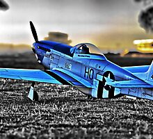 Scale P-51 Mustang by Brett Norman