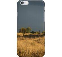 Summer Afternoon iPhone Case/Skin