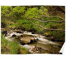 Shingle Creek - South Island - New Zealand Poster