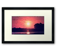 Purple morning Framed Print