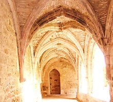 Carennac Cloister, Canon IXUS 50 by cschurch