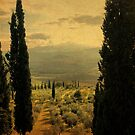 Between-Pienza, Italy by Deborah Downes