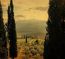 Between-Pienza, Italy by Deborah Downes