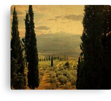 Between-Pienza, Italy Canvas Print