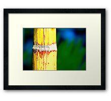 Colour Of Life XXIX Framed Print