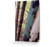 LONDON PARKS NATURALLY 5 Greeting Card