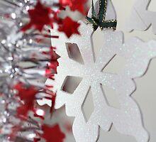 Snow Flake by ©Josephine Caruana