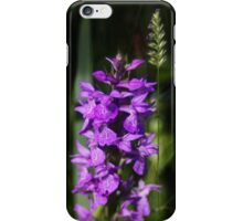 Hidden Beauty - iphone case iPhone Case/Skin