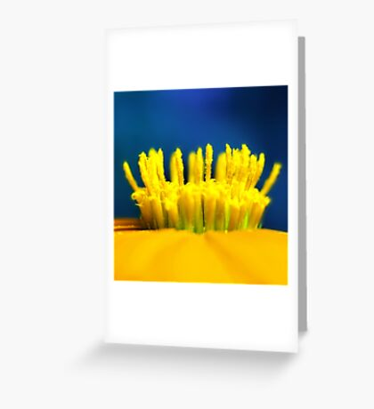 Primary Greeting Card