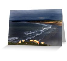 Sheep at Rhosilli Beach 2 Greeting Card