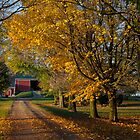 Fall On The Farm by John-Paul Fillion