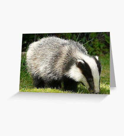 Badger Cub Greeting Card