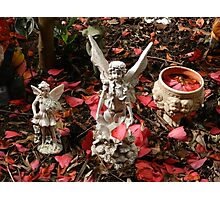 Fairy Garden Photographic Print