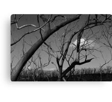 Burnt to the ground Canvas Print