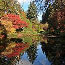 Autumn reflections at Butchart Gardens by celesteodono