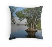 Morning in the glades Throw Pillow