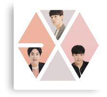Exoception (exo m within the exo logo) Canvas Print