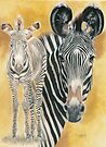 Grevy&#x27;s Zebra by BarbBarcikKeith
