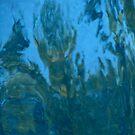Reflecting Pool Deity 2 by teresalynwillis