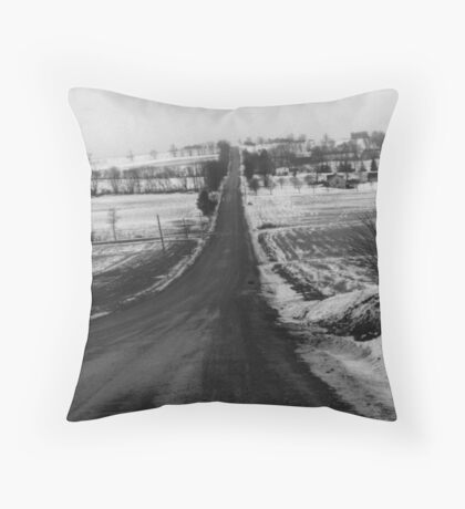Late Winter Backroad's Throw Pillow
