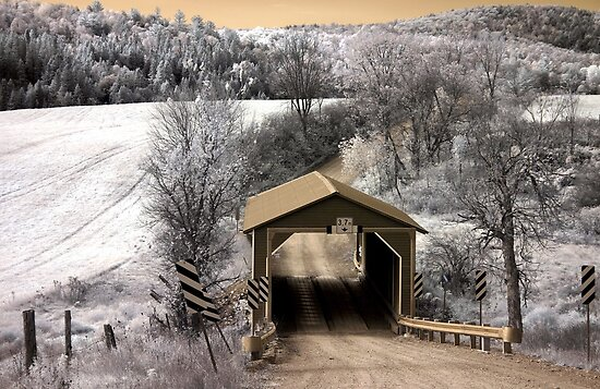 The Covered Bridge 5 Infrared - Gatineau Park Quebec by Debbie Pinard