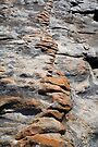 Rock Vein at Northpoint, Gracetown WA. by Leonie Mac Lean