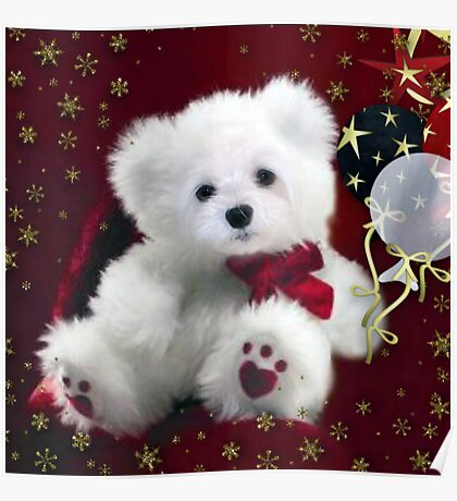 Snowdrop the Teddy Bear ! Poster
