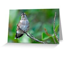 I am Smiling Silly and Humming Around Greeting Card