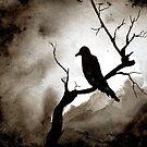 Crow by Mitch Adams