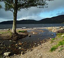 Loch Ness seen from Dorres by mike  jordan.