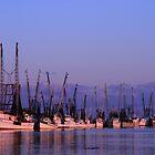 Dockside on the Darien by Christine Annas