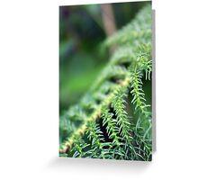 Greens Greeting Card