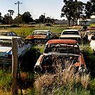 Farm Fresh Holdens by rossco
