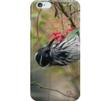 Just Hanging . . iPhone Case/Skin