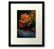 Angler on an Autumn River Framed Print