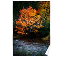 Angler on an Autumn River Poster