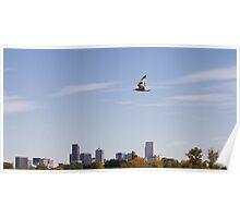 A Bird's Eye View Over Denver Poster