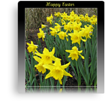 Easter Daffodils - Greeting Card Canvas Print