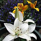 Snow White and Golden Lilies by kathrynsgallery