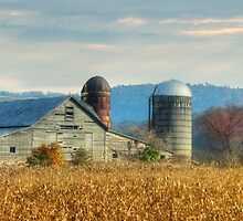 Time to Harvest by Lori Deiter