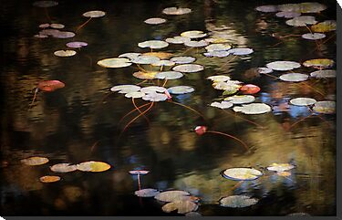 Autumn Pond by Linda Makiej