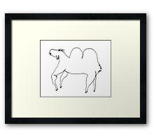Bactrian Camel Framed Print