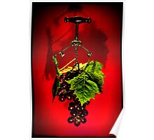 Grape vine Poster
