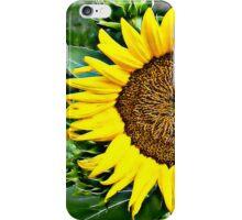 Sunflower HDR - phone case iPhone Case/Skin