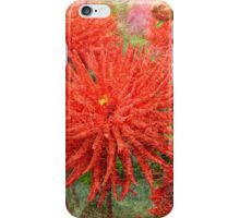 Dahlia Mania iPhone Case/Skin