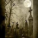 Silence © by Dawn M. Becker