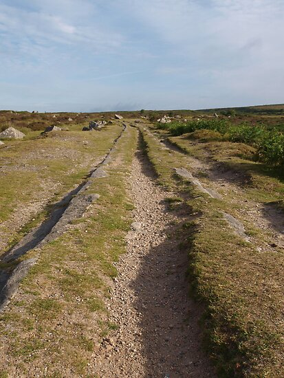 Haytor Quarry Tramlines by kalaryder