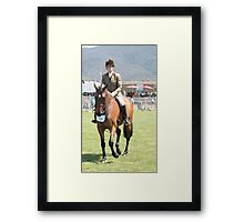 Bay Pony - Royal Hobart Show Tasmania Framed Print