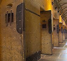 Cell Doors by collpics